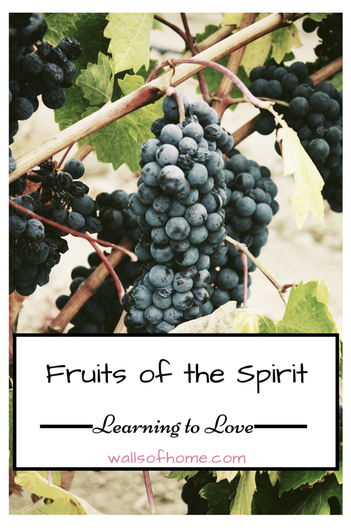 Fruits of the Spirit Learning to Love | 7 Bible Passages about Love.