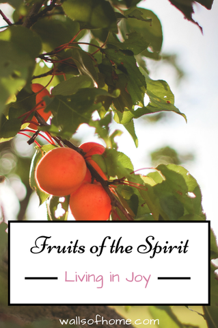 Fruits of the Spirit Living in Joy learning to allow God to pour His joy into my life