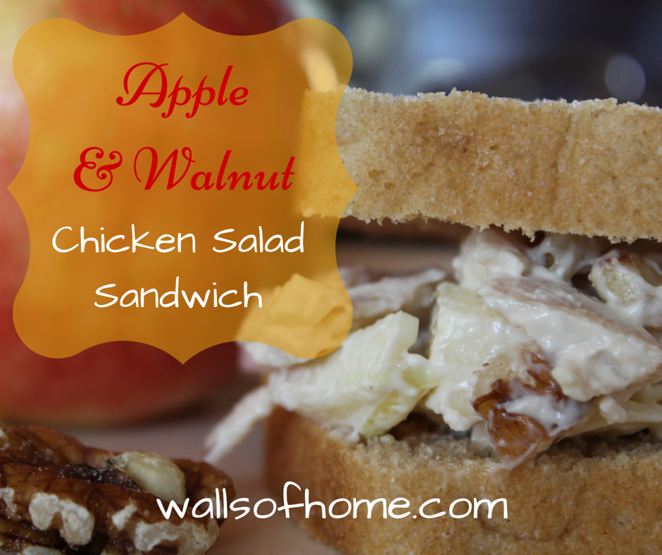 Apple & Walnut Chicken Salad Sandwich | A quick and delicious lunch for Fall!