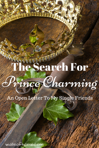 The Search for Prince Charming - An Open Letter To My Single Friends | What to look for in