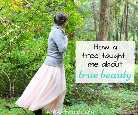 A shout out to Christian women everywhere - what painting a tree taught me about true beauty. <3