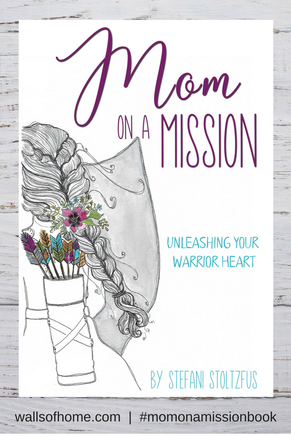 Mom on a Mission Book Image